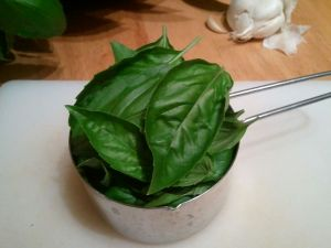 This is a packed cup of basil. I couldn't fit more leaves in there if I tried. (By the way, picking leaves off a basil plant is a great task for someone like me!)