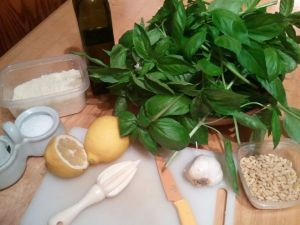 Gather everything together before you start, and you'll be done with your pesto in no time.