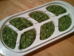 Mama put my old baby food freezer trays to good use!