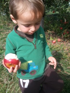 I'm performing quality control on this apple.